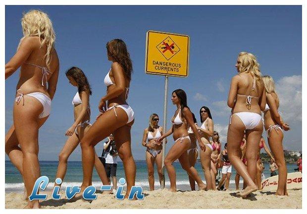 Информация об игре Название: Sexy Beach 2 Оригинальное название: Год - 11 М